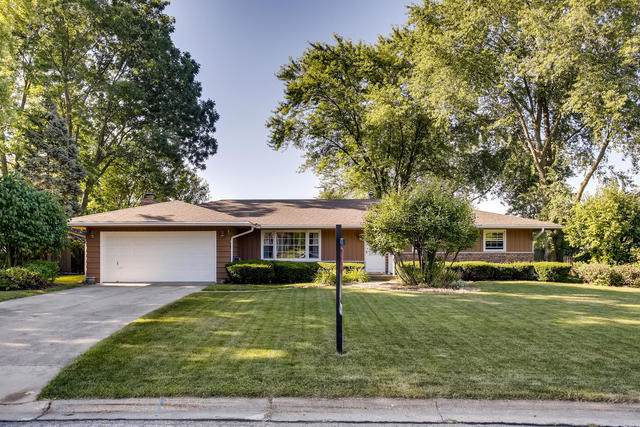 210 Briar Lane, North Aurora, IL 60542 (MLS #10468033) :: Property Consultants Realty