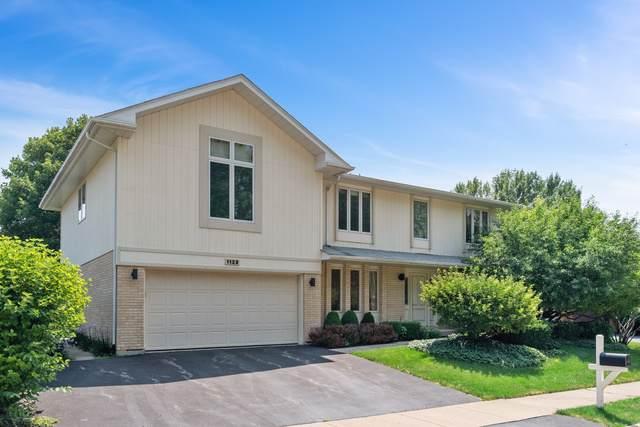 1123 Wayne Avenue, Deerfield, IL 60015 (MLS #10469135) :: Property Consultants Realty