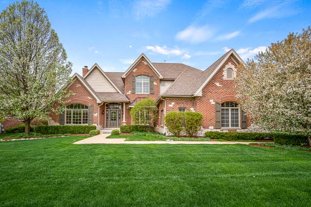 22496 Cobble Stone Trail, Frankfort, IL 60423 (MLS #10469404) :: Angela Walker Homes Real Estate Group