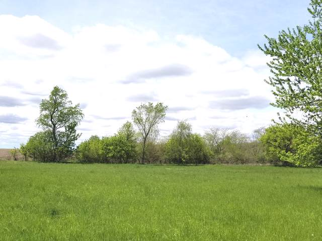 Lot 806 Brookside Drive, Varna, IL 61375 (MLS #10469529) :: The Perotti Group | Compass Real Estate