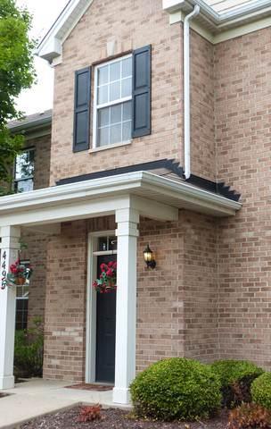 4496 Timber Ridge Court #4496, Joliet, IL 60431 (MLS #10470183) :: Property Consultants Realty