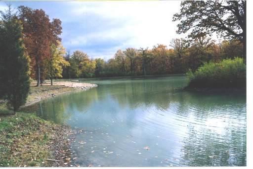 4(Lot 6) Hickory Drive, Mettawa, IL 60048 (MLS #10470607) :: The Dena Furlow Team - Keller Williams Realty