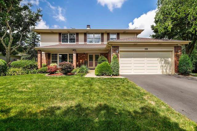 318 W Terrace Court, Palatine, IL 60067 (MLS #10472719) :: Berkshire Hathaway HomeServices Snyder Real Estate