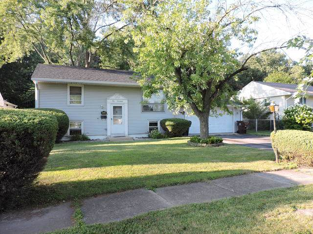 117 E Maple Drive, Glenwood, IL 60425 (MLS #10472832) :: Property Consultants Realty