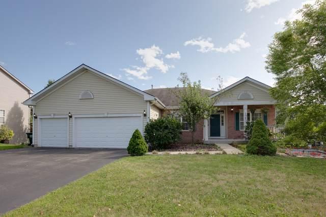 13433 W Hidden Springs Trail, Wadsworth, IL 60083 (MLS #10473873) :: BNRealty