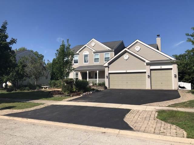 22700 Bass Lake Road, Plainfield, IL 60544 (MLS #10473977) :: Angela Walker Homes Real Estate Group