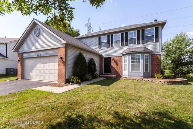 202 Tanager Court, Romeoville, IL 60446 (MLS #10474240) :: The Wexler Group at Keller Williams Preferred Realty