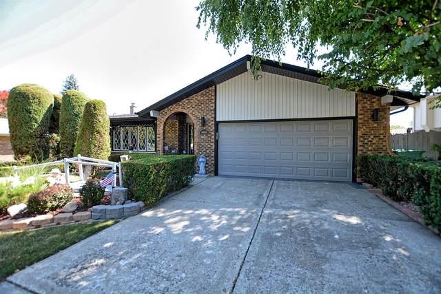 14453 S Mallard Lane, Homer Glen, IL 60491 (MLS #10474376) :: The Wexler Group at Keller Williams Preferred Realty