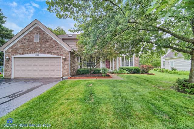1239 William Drive, Lake Zurich, IL 60047 (MLS #10474893) :: The Wexler Group at Keller Williams Preferred Realty
