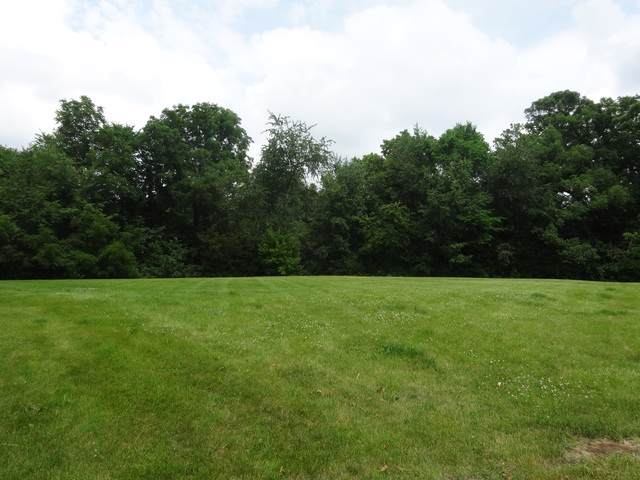 Lot 19 Colony Court, Yorkville, IL 60560 (MLS #10475095) :: Angela Walker Homes Real Estate Group