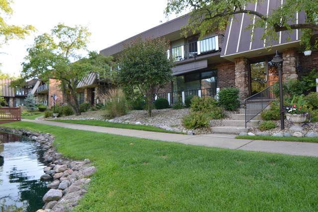 11120 Spathis Drive 1F, Palos Hills, IL 60465 (MLS #10475195) :: Berkshire Hathaway HomeServices Snyder Real Estate