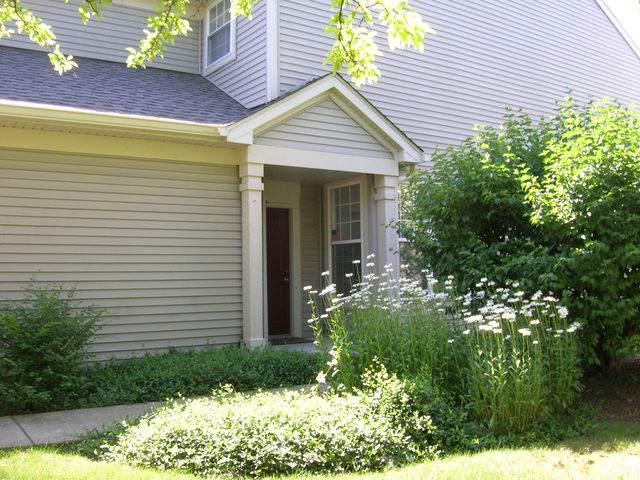 1456 Doolittle Lane #1456, Grayslake, IL 60030 (MLS #10475767) :: Berkshire Hathaway HomeServices Snyder Real Estate
