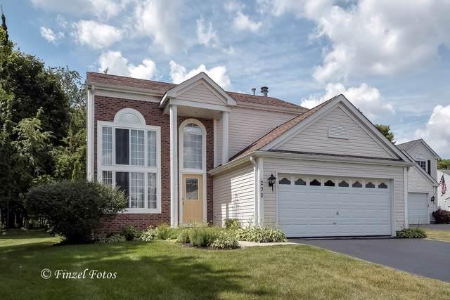 230 Lake Drive South Drive, Algonquin, IL 60102 (MLS #10475787) :: Ryan Dallas Real Estate
