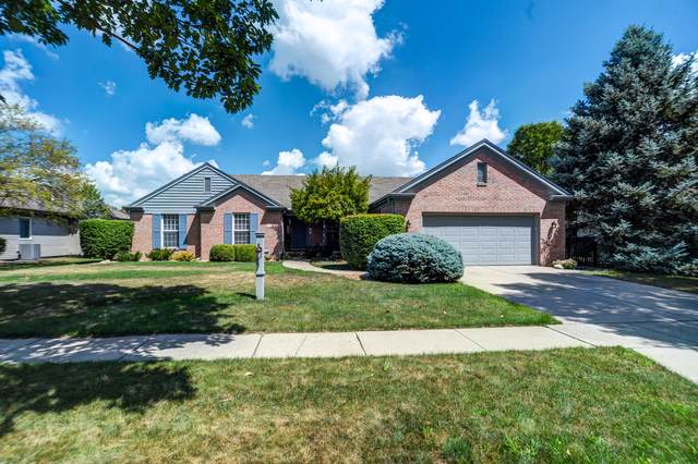 1408 Theodore Drive, Champaign, IL 61821 (MLS #10475896) :: The Wexler Group at Keller Williams Preferred Realty