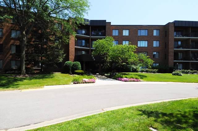950 E Wilmette Road #119, Palatine, IL 60074 (MLS #10476128) :: Angela Walker Homes Real Estate Group
