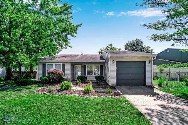 20529 S Driftwood Drive, Frankfort, IL 60423 (MLS #10476381) :: Property Consultants Realty