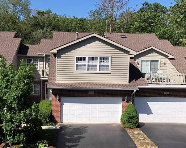 107 Willow Creek Lane, Willow Springs, IL 60480 (MLS #10476831) :: Angela Walker Homes Real Estate Group
