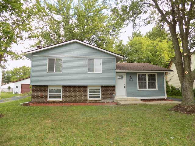 852 Lily Cache Lane, Bolingbrook, IL 60440 (MLS #10477066) :: BNRealty