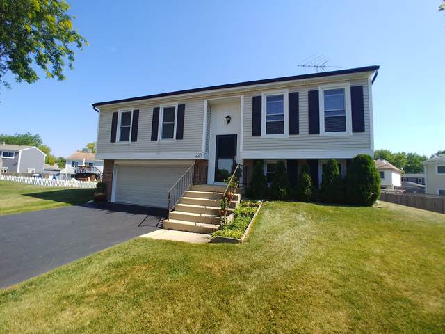 225 Ashley Court, Roselle, IL 60172 (MLS #10477145) :: The Wexler Group at Keller Williams Preferred Realty
