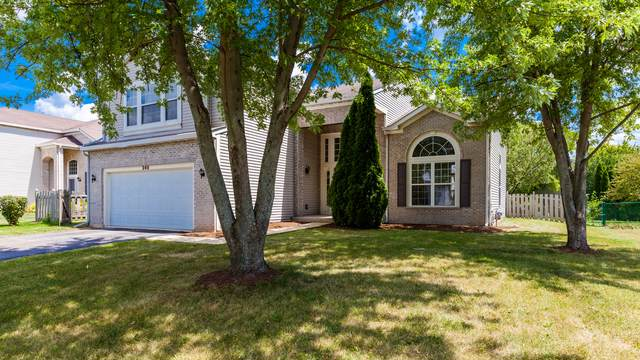 248 Paradise Parkway, Oswego, IL 60543 (MLS #10477204) :: Angela Walker Homes Real Estate Group