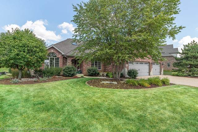 12348 Lajunta Court, Mokena, IL 60448 (MLS #10477230) :: The Mattz Mega Group