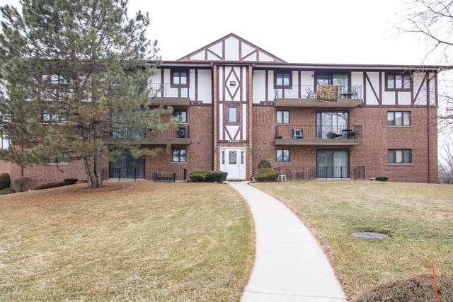 11024 S Theresa Circle 1A, Palos Hills, IL 60465 (MLS #10477350) :: Property Consultants Realty