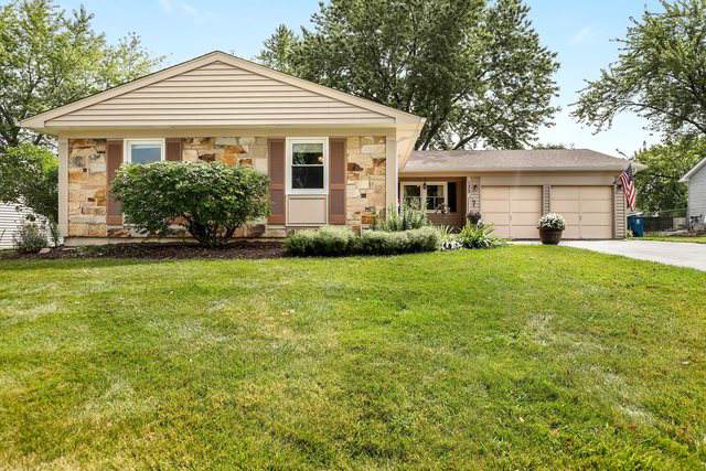 133 Brixham Place, Schaumburg, IL 60194 (MLS #10477526) :: Angela Walker Homes Real Estate Group