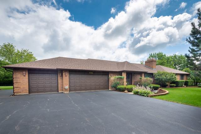 11102 Michigan Drive, Spring Grove, IL 60081 (MLS #10477614) :: Property Consultants Realty