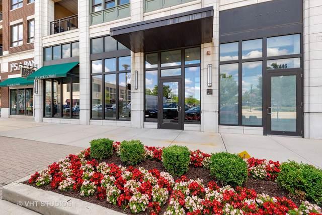 450 Village Center Drive #313, Burr Ridge, IL 60527 (MLS #10477671) :: Baz Realty Network | Keller Williams Elite
