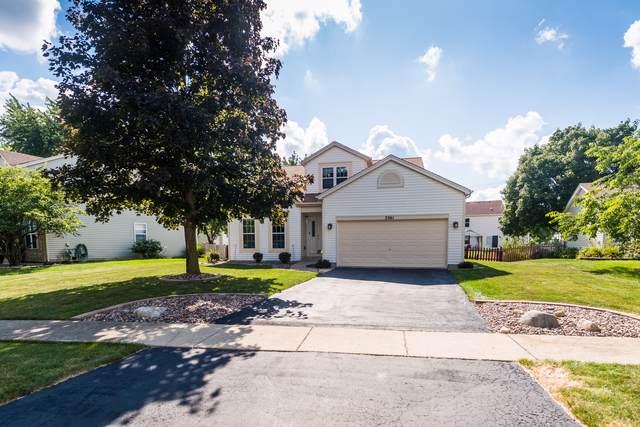 2061 Winding Lakes Drive, Plainfield, IL 60586 (MLS #10477918) :: The Dena Furlow Team - Keller Williams Realty