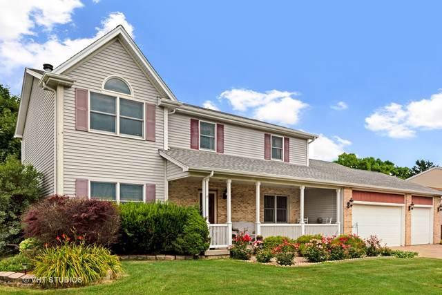 203 Deerhaven Drive, Minooka, IL 60447 (MLS #10478022) :: Ani Real Estate
