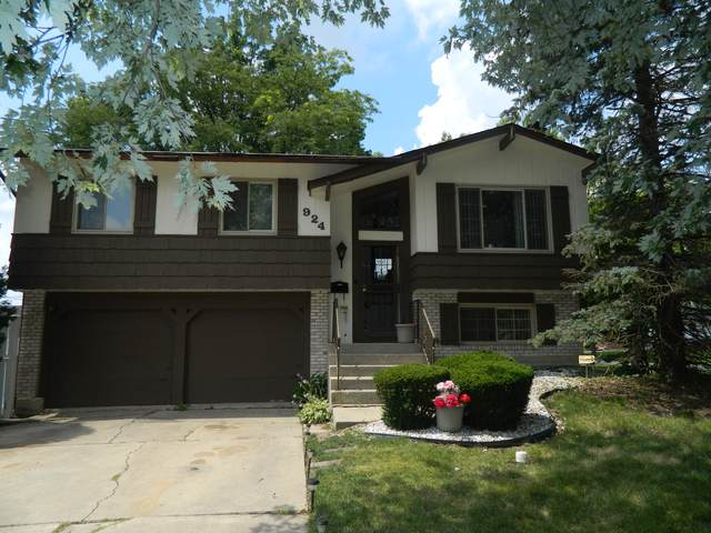 924 Samson Drive, University Park, IL 60484 (MLS #10478471) :: Berkshire Hathaway HomeServices Snyder Real Estate