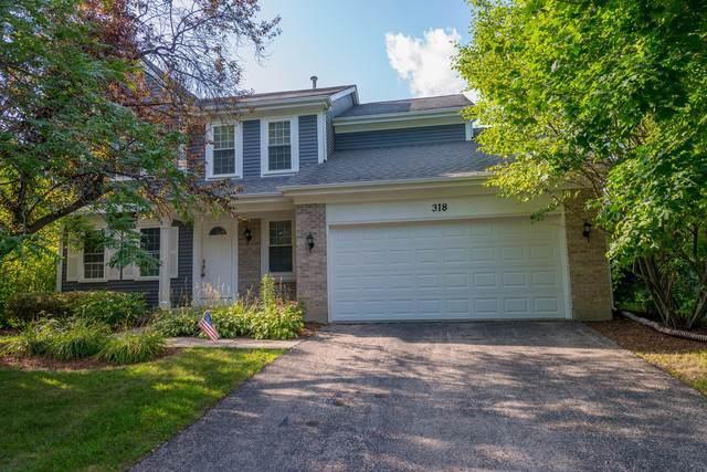 318 Anchor Drive, Carpentersville, IL 60110 (MLS #10478860) :: Angela Walker Homes Real Estate Group