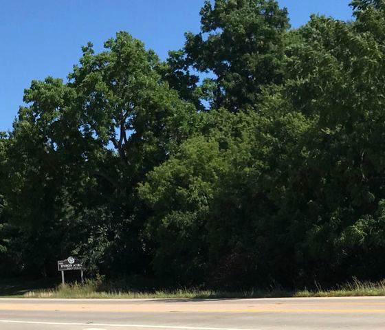 000 Blackhawk Dr. (L-3 Acres) Drive - Photo 1