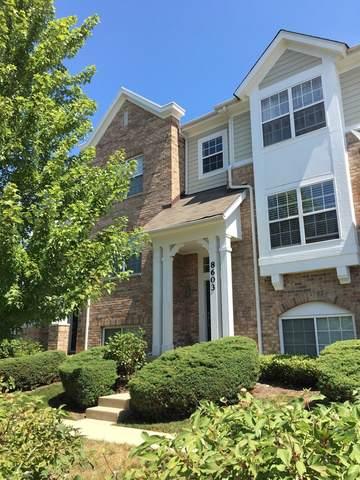 8603 Waukegan Road, Morton Grove, IL 60053 (MLS #10479547) :: Berkshire Hathaway HomeServices Snyder Real Estate