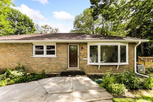 46 N Ashbel Avenue, Hillside, IL 60162 (MLS #10479616) :: Angela Walker Homes Real Estate Group