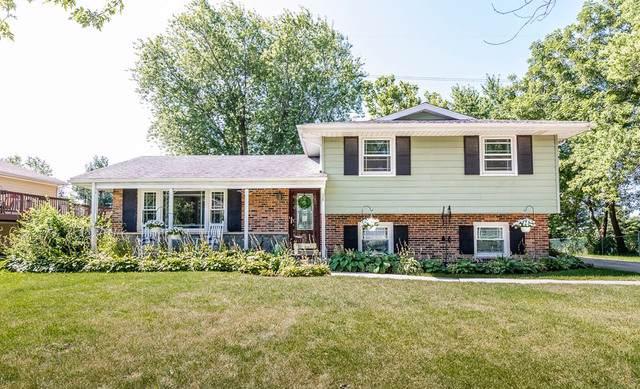 120 Pfaff Drive, Frankfort, IL 60423 (MLS #10479794) :: Berkshire Hathaway HomeServices Snyder Real Estate