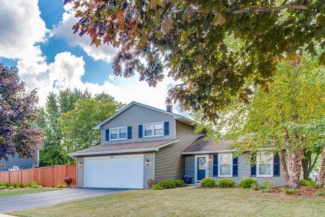 300 Terrace Drive, Bartlett, IL 60103 (MLS #10479795) :: Angela Walker Homes Real Estate Group