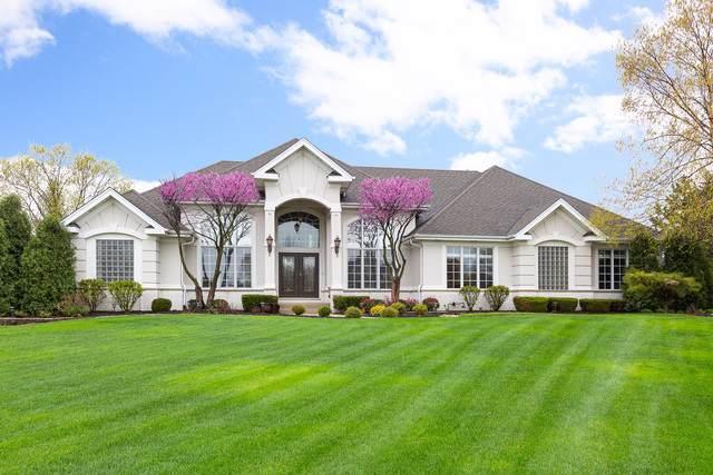 17040 Burr Oak Drive, Homer Glen, IL 60491 (MLS #10479836) :: The Wexler Group at Keller Williams Preferred Realty