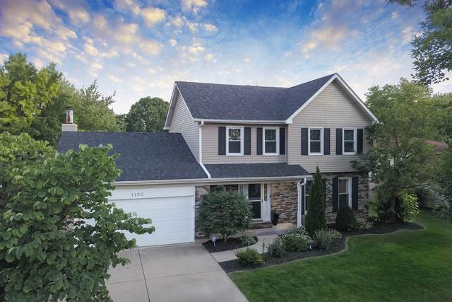 1100 Hyde Park Lane, Naperville, IL 60565 (MLS #10479840) :: Property Consultants Realty