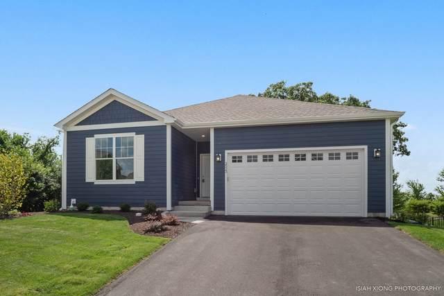 3523 Gallant Fox Drive, Elgin, IL 60124 (MLS #10479876) :: Suburban Life Realty