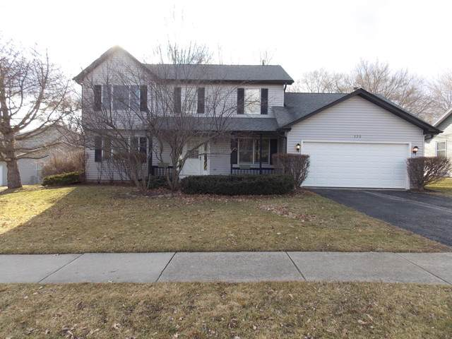 320 Moraine Hill Drive, Cary, IL 60013 (MLS #10480237) :: Berkshire Hathaway HomeServices Snyder Real Estate