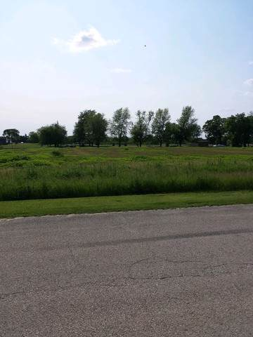 4551 1369th Road, Earlville, IL 60518 (MLS #10480352) :: The Wexler Group at Keller Williams Preferred Realty