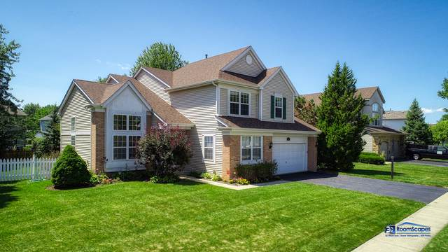 449 Penny Lane, Grayslake, IL 60030 (MLS #10480491) :: Berkshire Hathaway HomeServices Snyder Real Estate