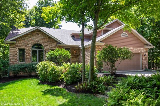 11531 Swinford Lane, Mokena, IL 60448 (MLS #10480533) :: Littlefield Group