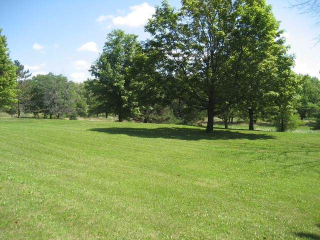Lot 8 Black Oak Court, Harvard, IL 60033 (MLS #10480591) :: Lewke Partners