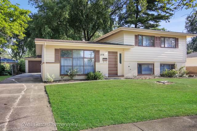 216 Kentucky Street, Park Forest, IL 60466 (MLS #10480623) :: John Lyons Real Estate