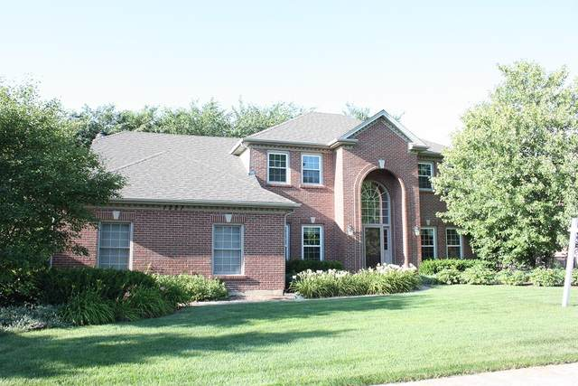 1221 Wind Energy Pass, Batavia, IL 60510 (MLS #10481019) :: Property Consultants Realty