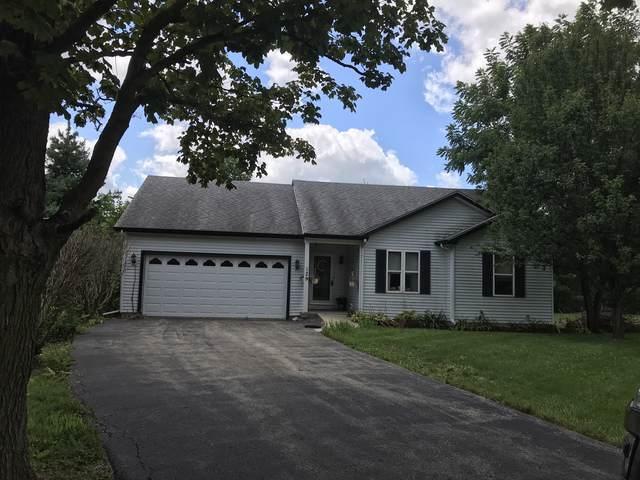 129 Tammy Lane, Lake Holiday, IL 60552 (MLS #10481409) :: Ryan Dallas Real Estate