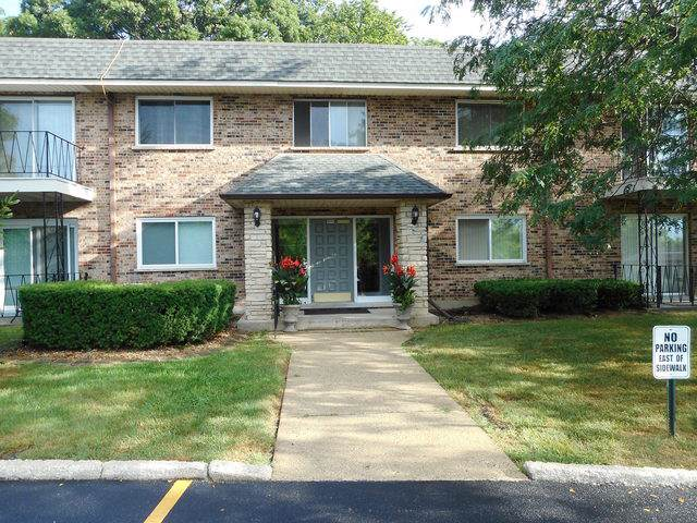191 Hillcrest Terrace 1C, Bloomingdale, IL 60108 (MLS #10481740) :: Ani Real Estate